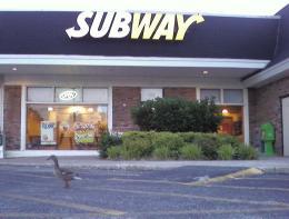 Subwayduck