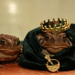 KingToadandHisQueen