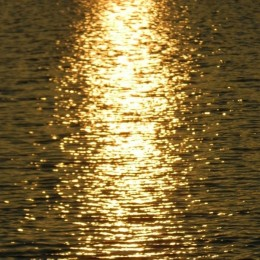 When Water Beams Like Gold