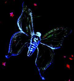 LEDButterfly