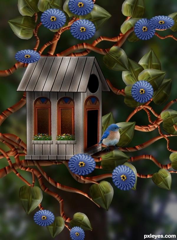 A Birds House