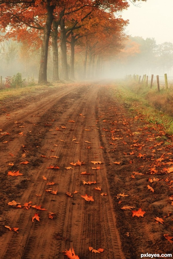 Fall On A Country Road photoshop picture)