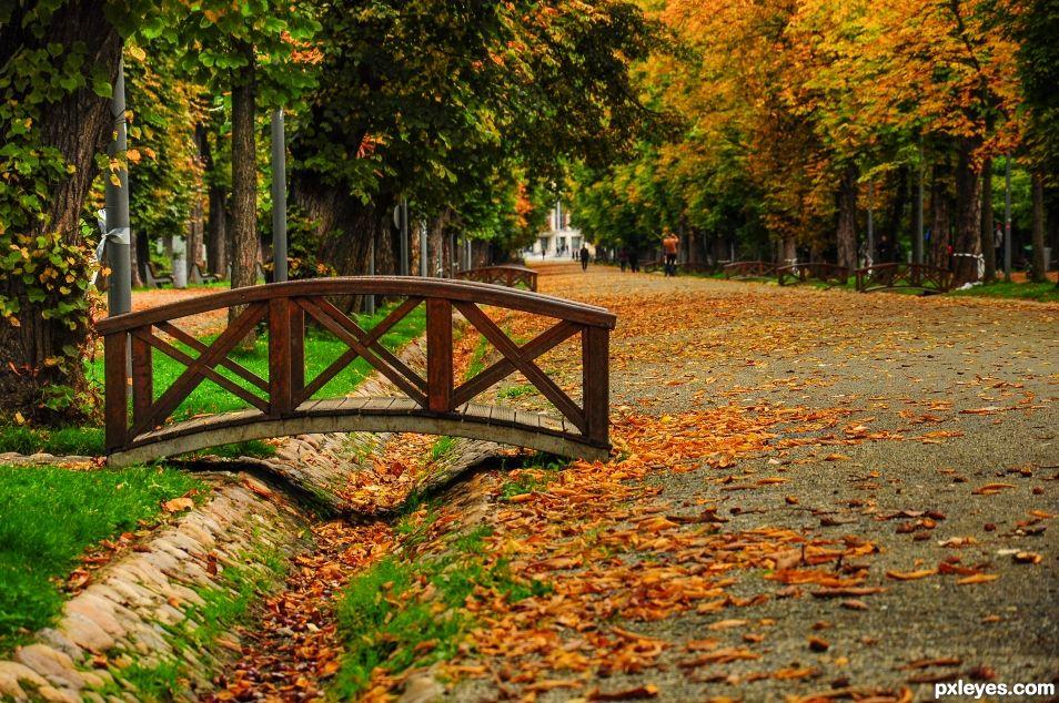 Bridge over the fall