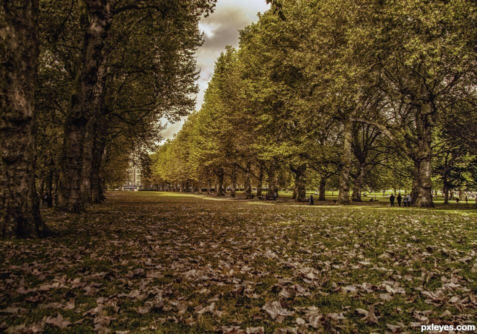 Green not so green Park