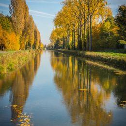 Autumnreflexion