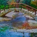 autumn bridge photoshop contest
