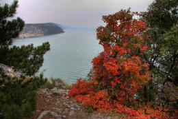 Autumn and sea