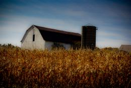 Midwest Farm
