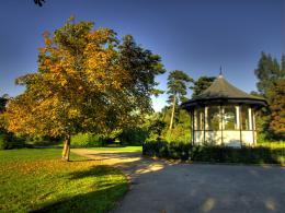 autumn park Picture