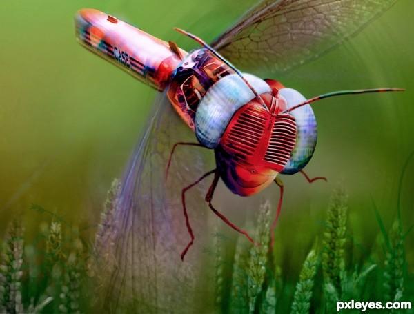 Casefly