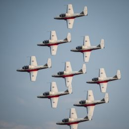 Canadian Snowbirds in formation