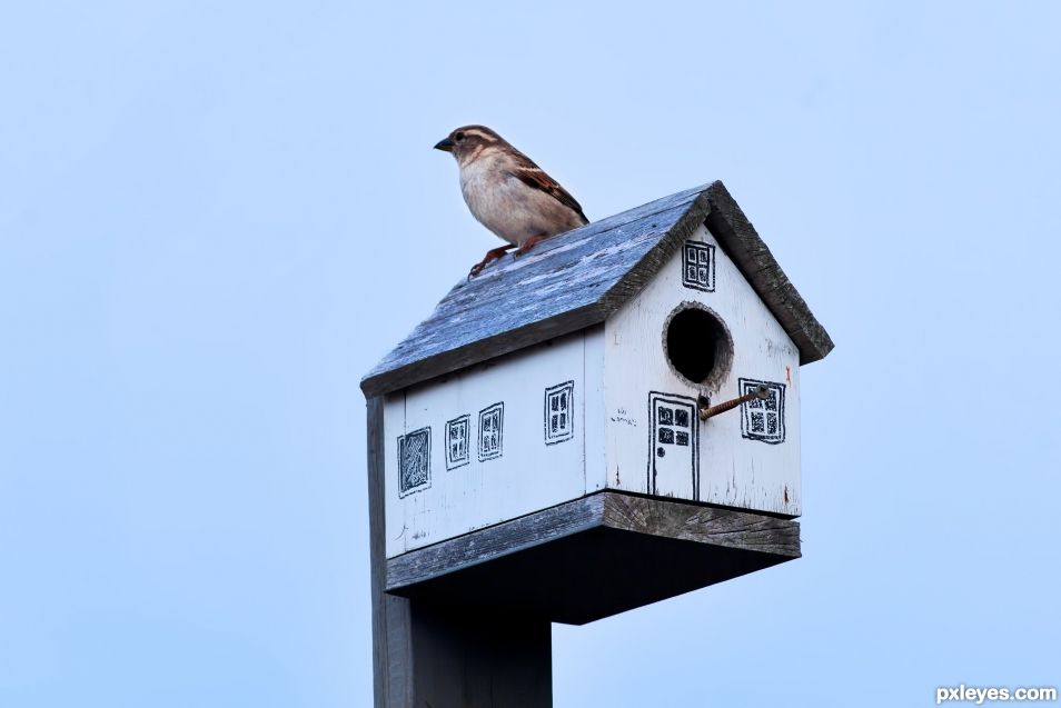 B is for Birdhouse