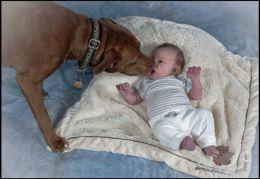 Babys First Kiss?