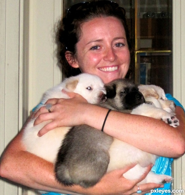 Puppies in Arms