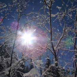 Beaming snow Picture