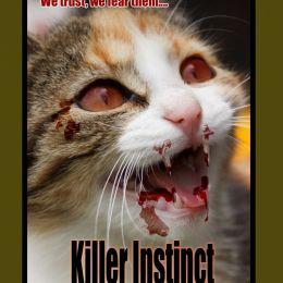 Killer Instinct Picture