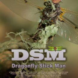 DSM Picture