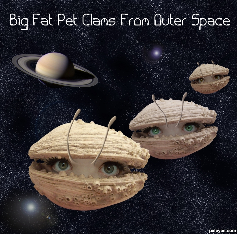 Creation of Big Fat Pet Clams From Outer Space: Final Result