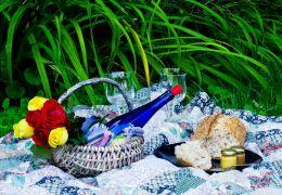 Splendor in the Grass Picture