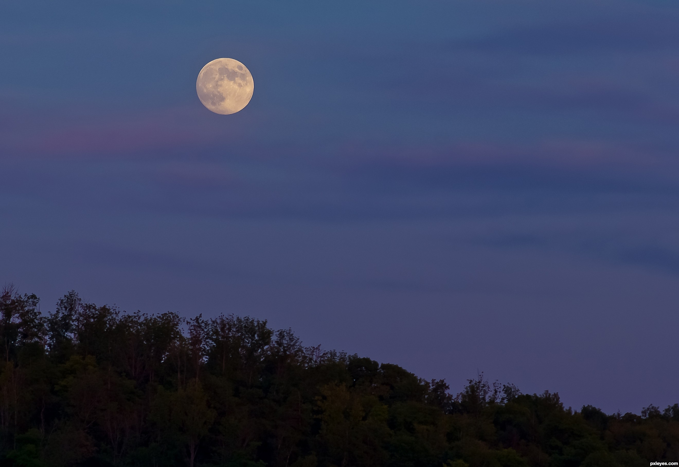 blue moon photography portland oregon - photo #2