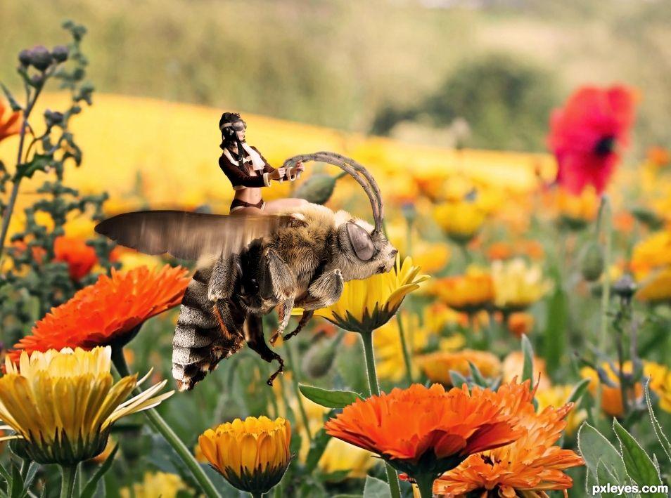 The bee rider