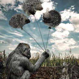 Spikyballoons