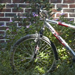 Bikerest