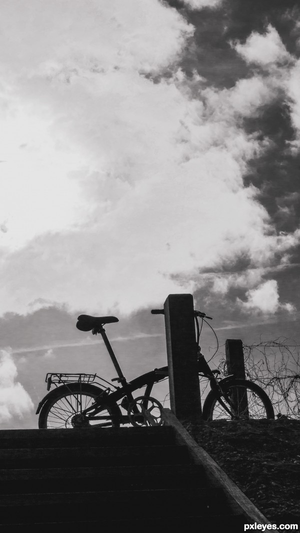 Under a cloudy sky