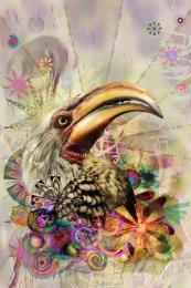 BirdPortrait