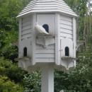 bird house 2 photoshop contest