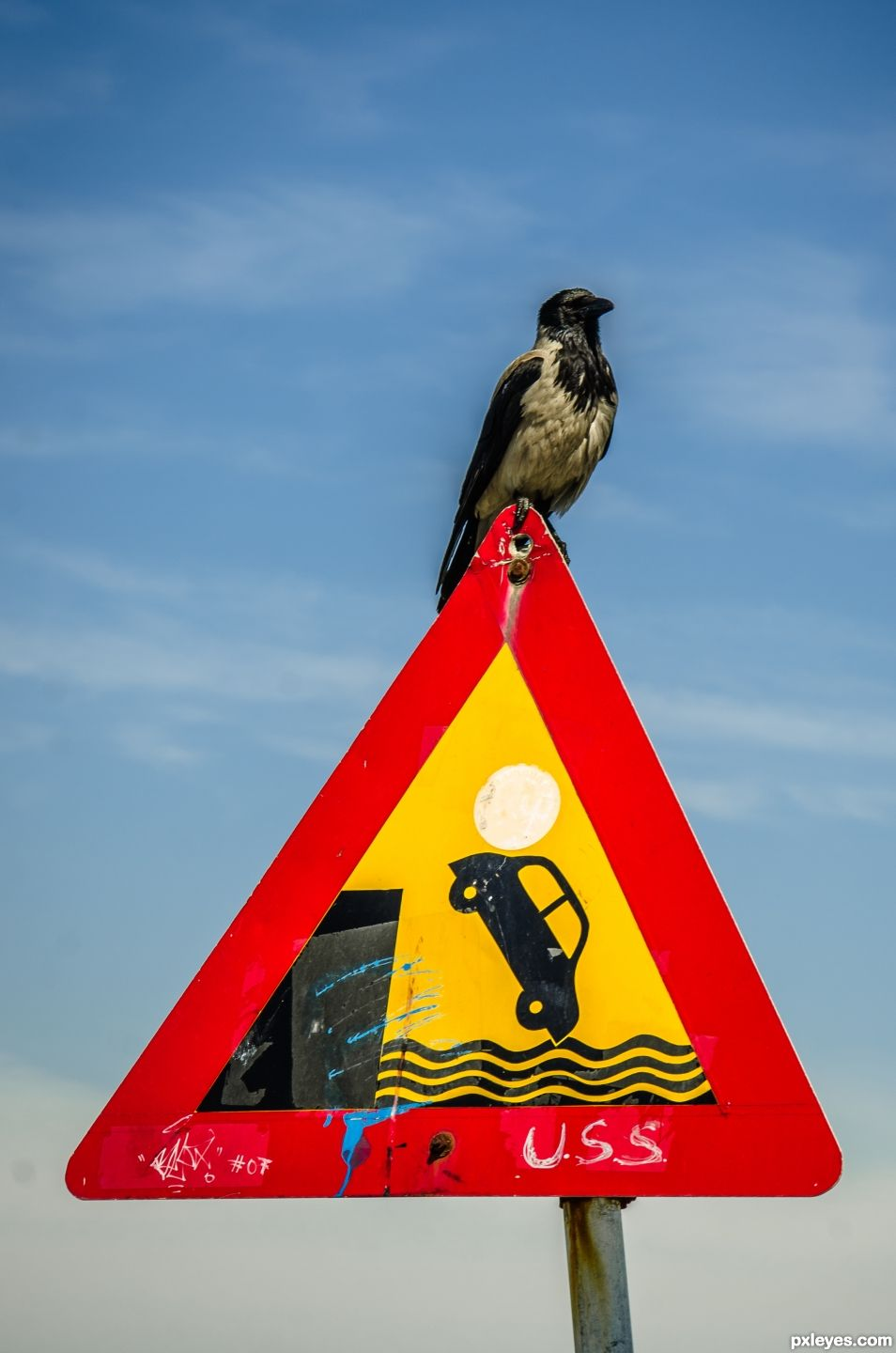 Sign of the Crow