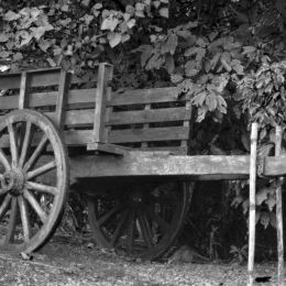 theoldcart