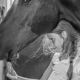 Agirlandherhorse