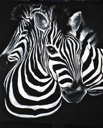 painted zebras