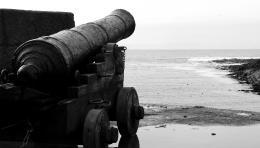 blackcannon