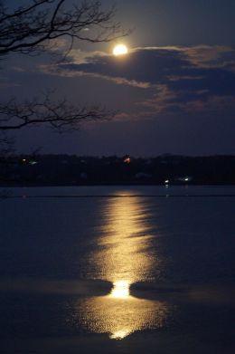 Full moon before dawn