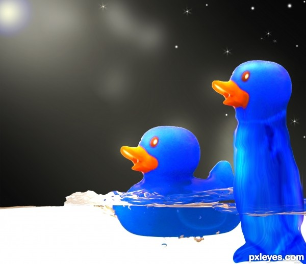 Beutiful Night Picture By Shaiju1974 For Blue Duck Photoshop Contest Pxleyes Com