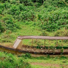 jungleboatreadytogo