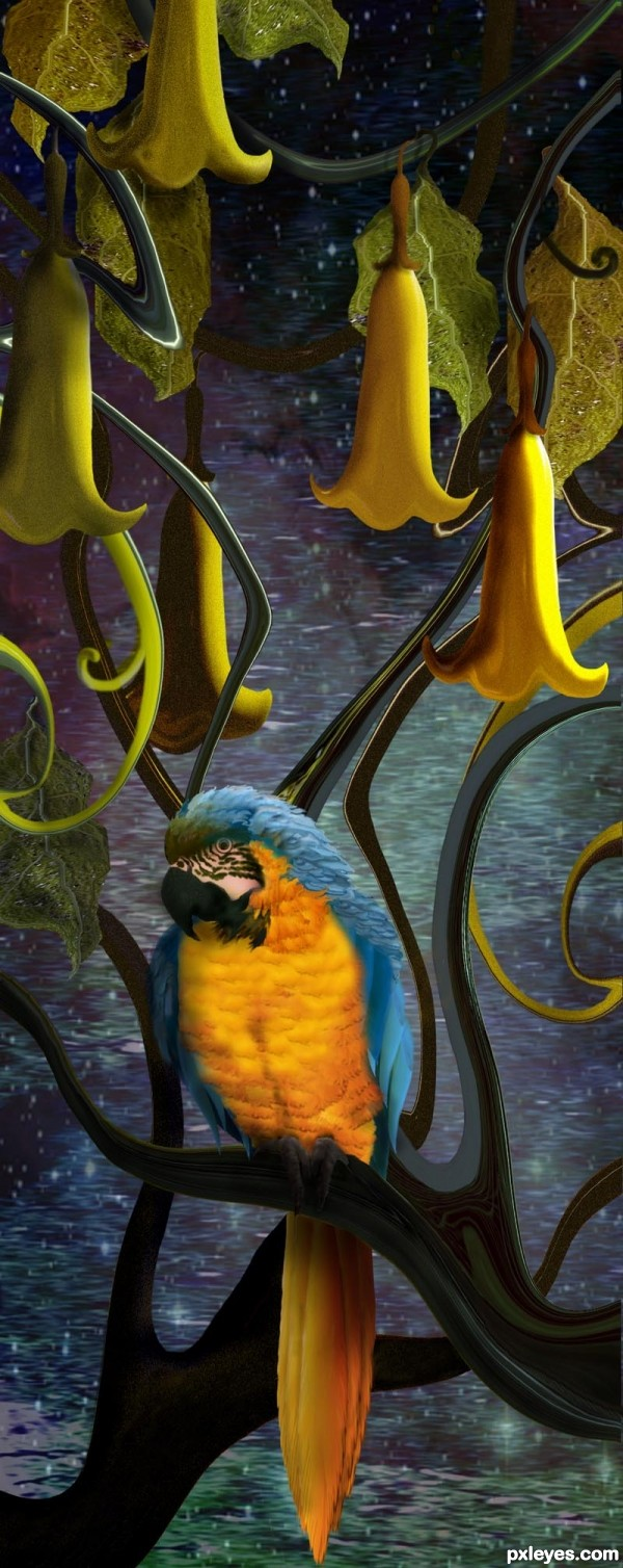 Parrot and Trumpets photoshop picture)