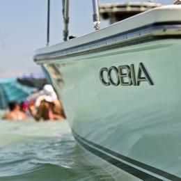 Cobiaboat