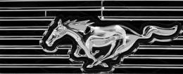 MustangbyFord