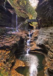 Elven Trail