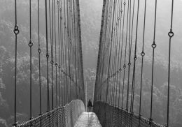 Crossing Over Picture