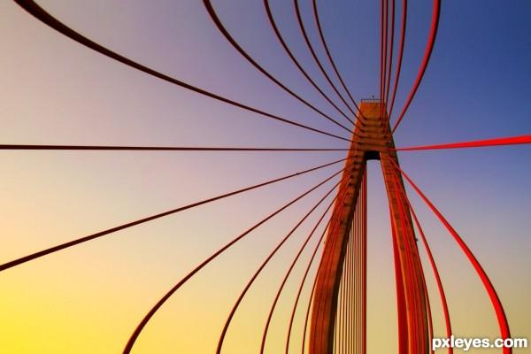 vivid bridge