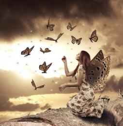 Butterfly Faerie Picture