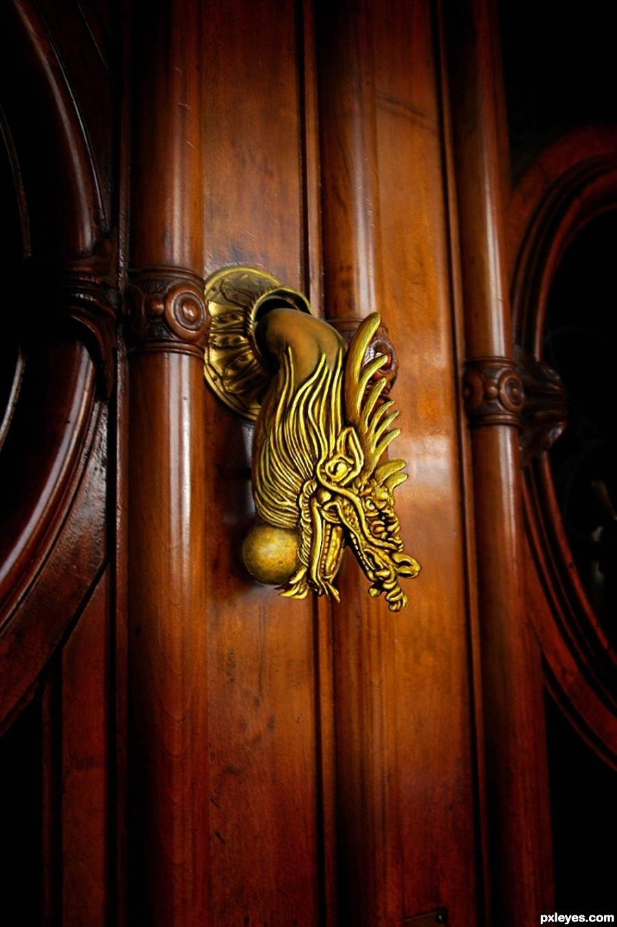 Door knocker picture by glockman for bronze dragon photoshop contest - Dragon door knocker ...