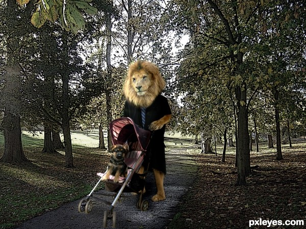 nice afternoon walk