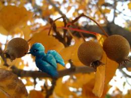 Treeandbird
