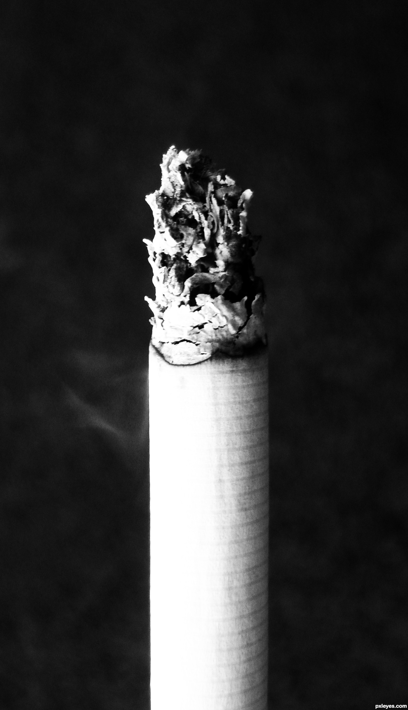 Burning Cigarette Photography