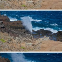TheBlowhole